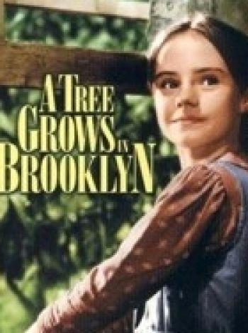 Drzewko na Brooklynie
