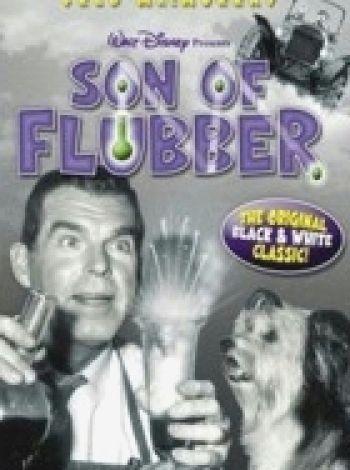 Flubber - mikstura profesora