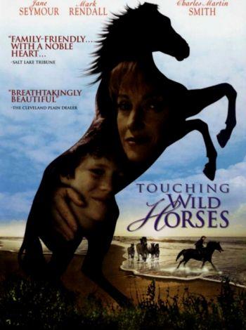 Jak dzikie konie
