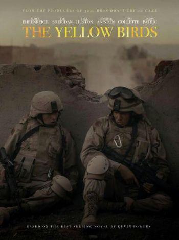 Żółtodzioby